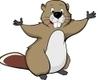 Insurance Beaver