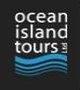 Ocean Island Tours: Mauritius Hotels